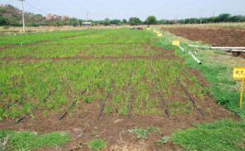 Micro Irrigation Fund of Rs. 5,000 Cr created under NABARD