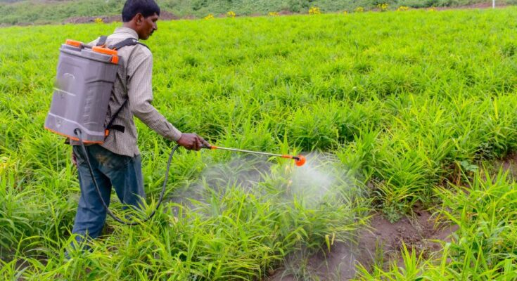 India emerges as global leader in the agrochemical industry: Parshottam Rupala