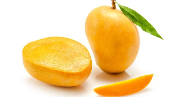GI-tagging makes Indian Alphonso traceable, to curb falsification
