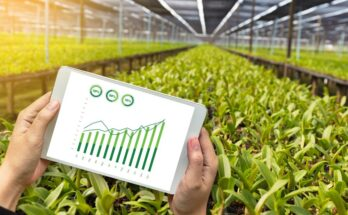 How data-based practices are revolutionising agriculture?