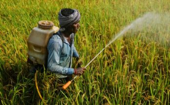 PM's call to tap food processing industry may boost agrochemical Industry