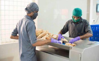 Bengaluru-based foundation exports organic jackfruit to Germany