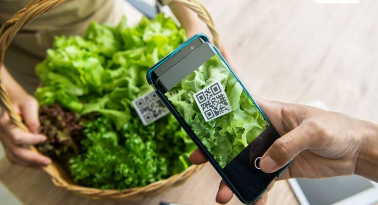 SaaS-based Agriculture: Revolutionising agri sector with cutting-edge software solutions