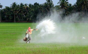 Mansukh Manadaviya reviews making India self-reliant in fertilisers