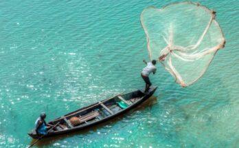Blue Aqua, SAS, Hewlett Packard Enterprise to develop smart aquaculture solution for fish farming