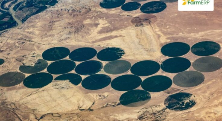 Can satellite imagery strengthen food security?