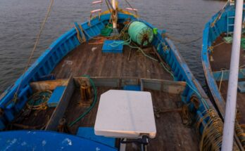Skylo IoT-based solution enables fishermen initiate selling their catch offshore