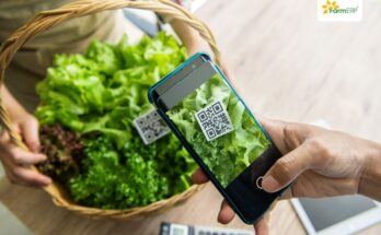 Zero Hunger and AgriTech: How are they co-related?